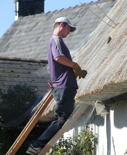 Thatching - putting the wire on