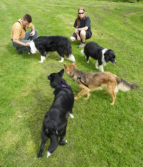Clockwise from top left: Jake, Mitch, Flo and Cassie (and Nigel and Beth)