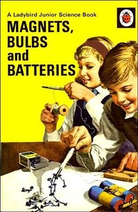 Magnets, Bulbs and Batteries